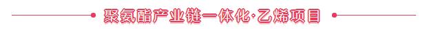 聚氨酯�a�I�一�w化――乙烯�目