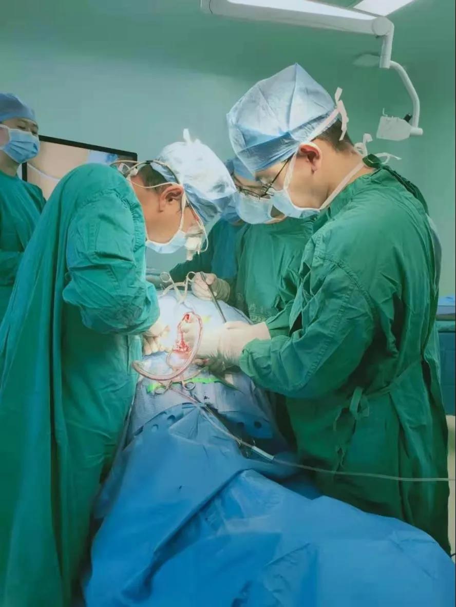 郑燕平教授在手术中